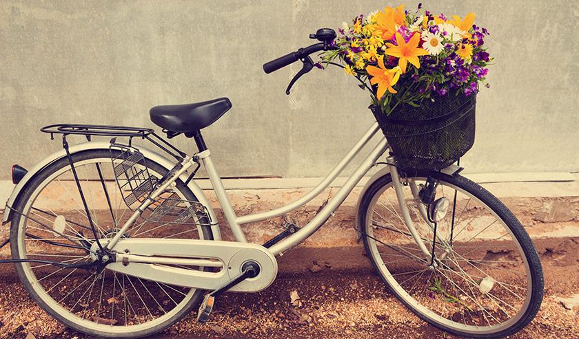 Hur väljer man rätt cykel?